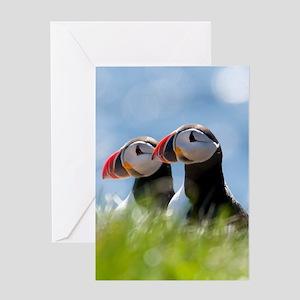 Puffin Pair 7.355x9.45 Greeting Card