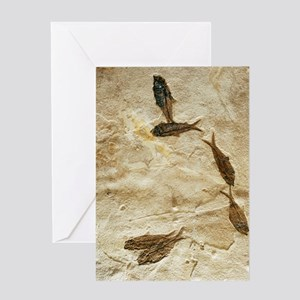 Fish fossils Greeting Card