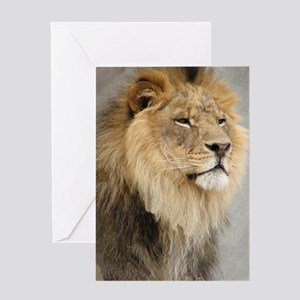 Lion Lovers Greeting Card
