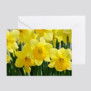 Trumpet Daffodil Greeting Card