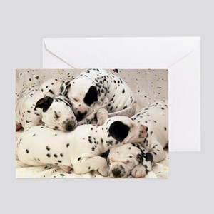 Dalmation sm fr pan print Greeting Card