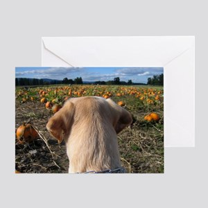Nov Lab of the Month Greeting Card