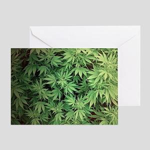 Marajuana Weed Pot Greeting Card