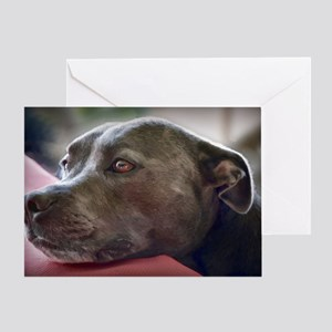 Loving Pitbull Eyes Greeting Card