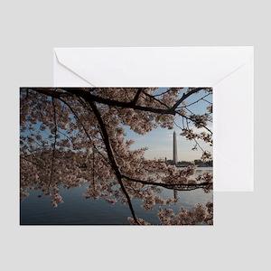 DSC_0029-4 Greeting Card