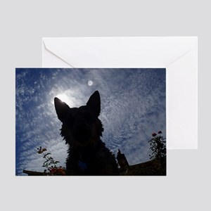 Stealthy Cattle Dog Greeting Card
