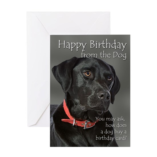 Black Lab Birthday