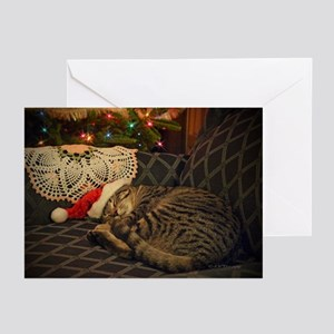 Kitten Christmas Cards.Cat Greeting Cards Cafepress