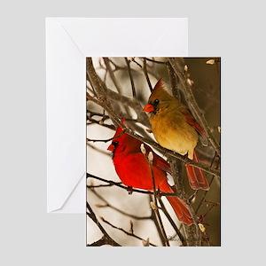 cardinals2poster Greeting Cards