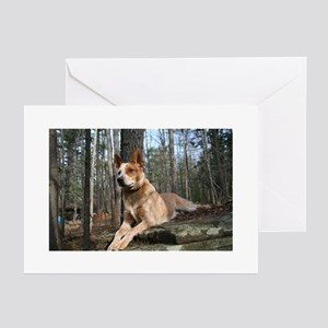 ACDs Greeting Cards