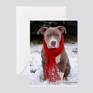 Holiday Pit Bull Greeting Cards