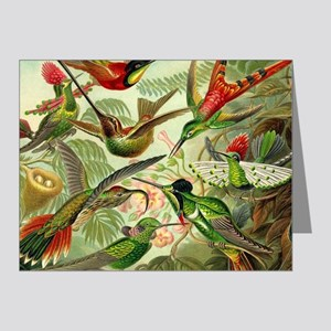 Vintage Hummingbirds Decorative Note Cards