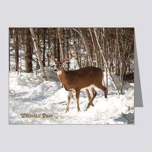 10 Point Buck Note Cards (Pk of 10)