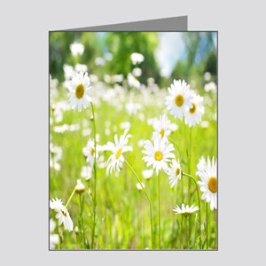 Filed of Daisies Note Cards (Pk of 10)