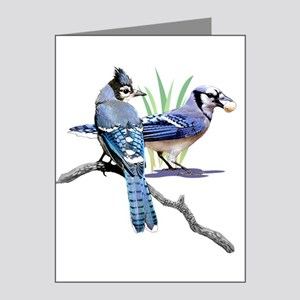 Blue Jay Note Cards (Pk of 10)