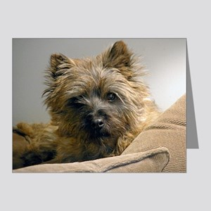 Pensive Cairn Terrier Note Cards (Pk of 10)
