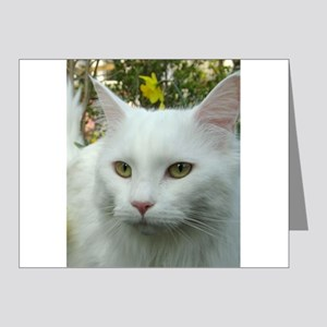 maine coon fourth white Note Cards