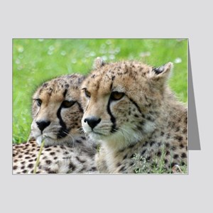 Cheetah009 Note Cards (Pk of 20)
