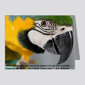 B&G Macaw with Quote Note Cards (Pk of 20)