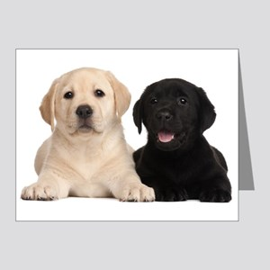 Labrador puppies Note Cards (Pk of 20)