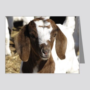 Cute kid goat Note Cards (Pk of 20)