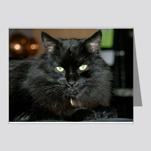Charlie the black Maine Coon Cat Note Cards (Pk of