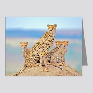 Cheetah Family Note Cards