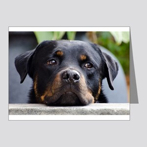 LS rottweiler second Note Cards