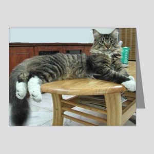 maine coon laying 2 Note Cards