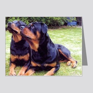 Rottweiler Note Cards (Pk of 20)