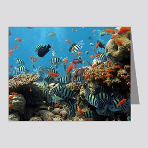 Fishes and Underwater Plants Note Cards