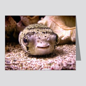 Blowfish Note Cards (Pk of 20)