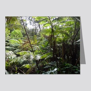 Tropical Jungle Note Cards (Pk of 20)