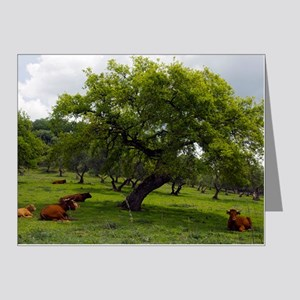 Cattle under a holm oak tree Note Cards (Pk of 20)