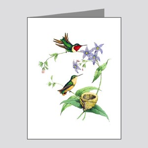 Hummingbirds Note Cards (Pk of 20)