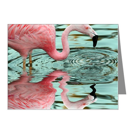 Pink Flamingo Reflection