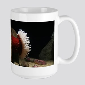 Red White Anemone Monterey Mugs