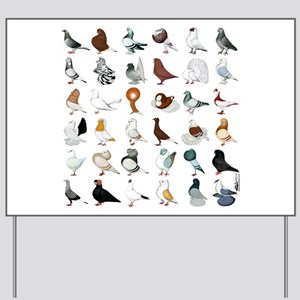 36 Pigeon Breeds Yard Sign