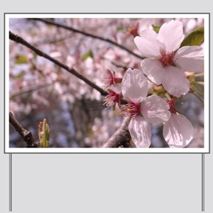 Cherry Blossoms Yard Sign
