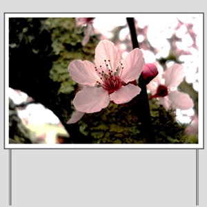 Cherry Blossom, 1 Yard Sign