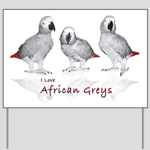 african grey parrots Yard Sign