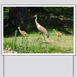 Sandhill Cranes Yard Sign