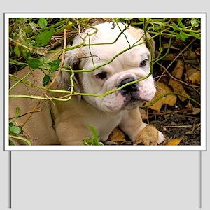 English Bulldog Puppy Yard Sign