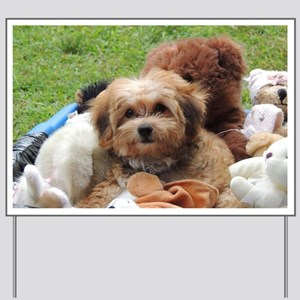 Copper the Morkie Yard Sign