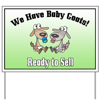 Baby Goats For Sale No Horns Yard Sign Goat Yard Signs