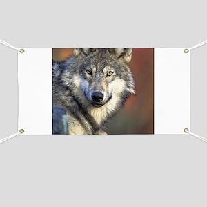 Wolf 024 Banner