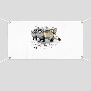 Ferrets Banner