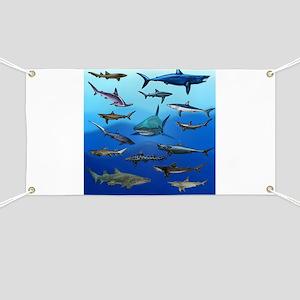 Shark Gathering Banner