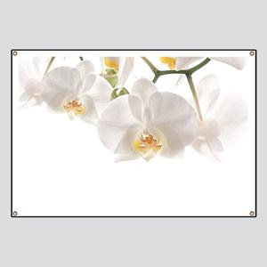 Orchids Reflection Banner