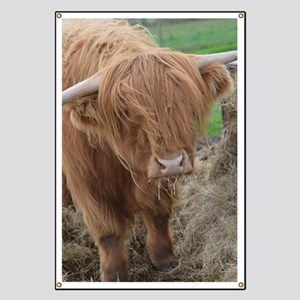 Young Highland Cow Banner